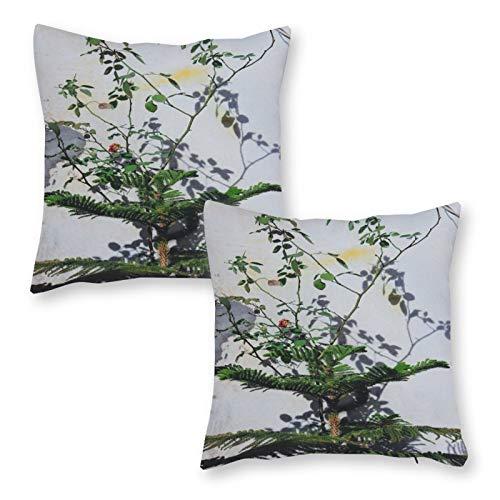 DKE&YMQ Juego de 2 fundas de cojín decorativas de lino para el hogar, rama, ramita botánica ilustración conífera