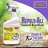 Bonide 238 Sprayer Animal Repellent