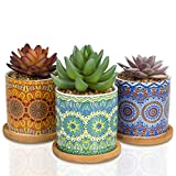 Casaluxe Artificial Succulents, Set of 3– Two-Toned Real Touch Plastic Fake Plants in Beautiful Mandala Pattern Ceramic Pots– Stylish, Modern Farmhouse Decor, Small and Ultra Cute: 5x3 inches