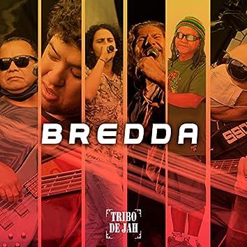 Bredda