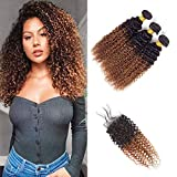 Ombre T1B/30 3 Bundles with Closure 4X4 Lace Free Part Wet Wavy Kinky Curly Human Hair Brown Brazilian Hair 8A Grade Soft Brazilian Hair Extensions(12 14 16 +10)