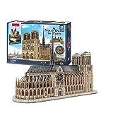 WUYI Puzzles 3D Paris Notre Dame Rompecabezas Arquitectura Unido Modelo de Construcción Kits para Adultos Regalos, 293 Piezas Paris Notre Dame