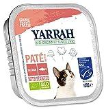 Yarrah Comida para Gatos de Pate Lachs, 100 g, 16 Unidades (16 x 0,1 kg)