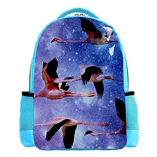 YATELI Mochila ligera para la escuela,Galaxia de flamenco , Mochila informal clásica básica resistente al agua para viajes con bolsillos laterales para botellas