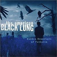 Sudden Departure of Vultures