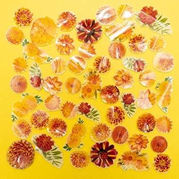 Marigold (Mandolin Mix)