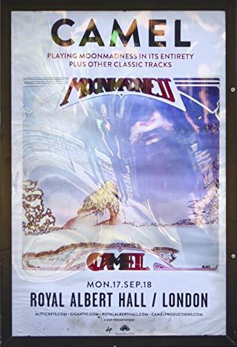 Camel - At The Royal Albert Hall [Italia] [Blu-ray]