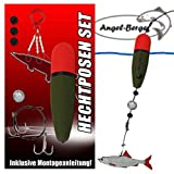Angel-Berger Hecht Posenset Köderfischset Köderfischmontage (20g)