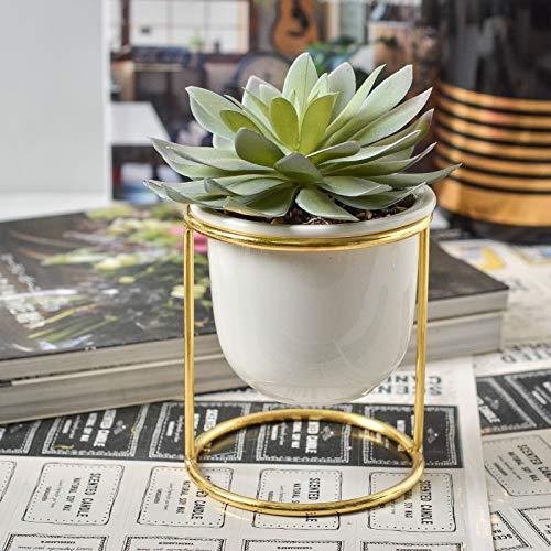 DXM Simulierte saftige Topfpflanzen, Nordic Light Luxury Metall Schmiedeeisen Simulierte Topfpflanzen, Pflegeleichte Topfpflanzen für Home Porch Schrank Dekoration Büro-Desktop-Zubehör (blau)