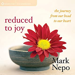 Reduced to Joy audiobook cover art