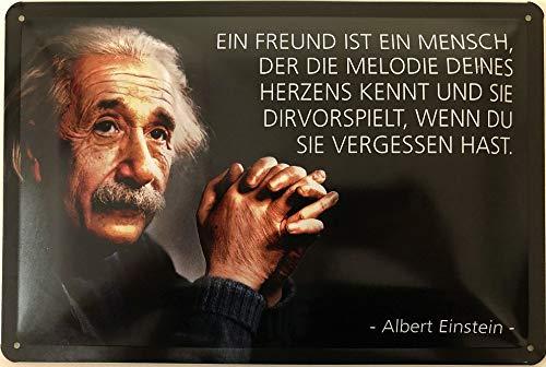 Deko7 Blechschild 30 x 20 cm Albert Einstein Spruch - EIN Freund ist EIN Mensch, der die Melodie Deines Herzens kennt und sie dir vorspielt, wenn du sie vergessen hast