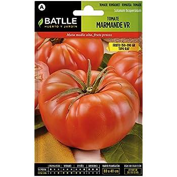 Semillas Fitó 290 - Semillas de Tomate Marmande Cuarenteno: Amazon ...