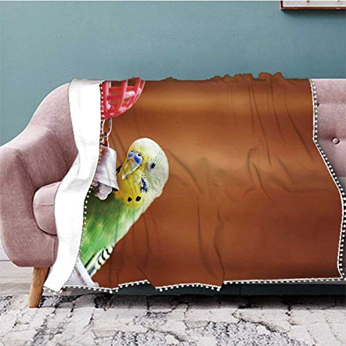 Hitecera Budgerigar Pets,Flannel Fleece Throw Blanket, Weight Super Soft Cozy PBed Blanket Toy 50''x40''(WxL)