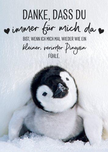 Postkarte A6 +++ LUSTIG von modern times +++ WIE EIN KLEINER, VERIRRTER PINGUIN +++ ZWEITGEIST Foto: wildlifephotography.de/Thorsten