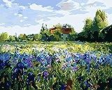 Pintar por Números Adultos y Niños Vista de Flowery Manor DIY Pintura al Óleo por Números Lienzo 40*50cm(Sin Marco) Decoración del Hogar Pared
