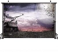 新しい7X5ftハロウィン写真の背景ハロウィンナイトムーンカーニバル写真の背景の背景カーニバルパーティーの写真ブースの背景怖いヴィンテージルームハロウィンYouTube写真の背景