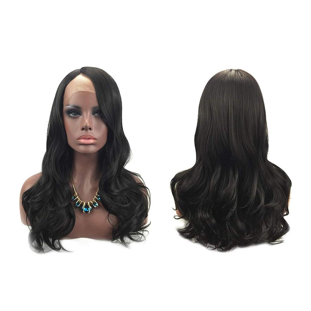 事実学習始まり女性のファッションの長い巻き毛のかつら自然な絶妙な弾性ネットウィッグカバー(黒)