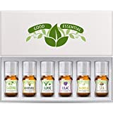 Fragrance Oils Set of 6 Scented Oils from Good Essential - Gardenia Oil, Lilac Oil, Honeysuckle Oil, Jasmine Oil, Magnolia Oil, Spa Oil: Aromatherapy, Perfume, Soaps, Candles, Slime, Lotions!