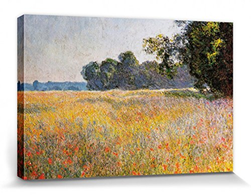 1art1 Claude Monet - Campo De Avena Y Amapolas, 1890 Cuadro, Lienzo Montado sobre Bastidor (120 x 80cm)