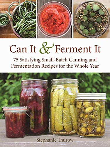 Top 10 fermenting food jars for 2020