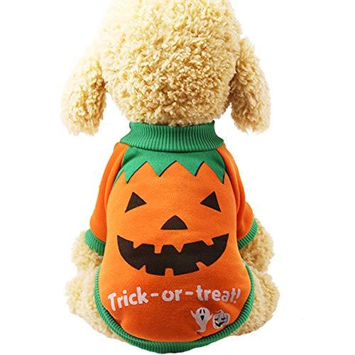 ENticerowts Sudaderas de Halloween, Ropa para Mascotas, Perro, Cachorro, Calabaza Naranja, Bruja,...