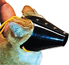 Best muzzle for cats Reviews