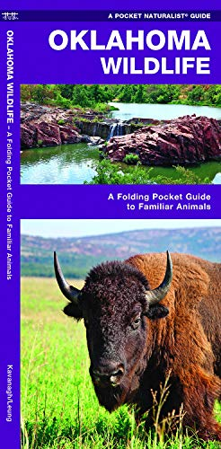 Oklahoma Wildlife: A Folding Pocket Guide to Familiar Animals (Pocket Naturalist Guides)
