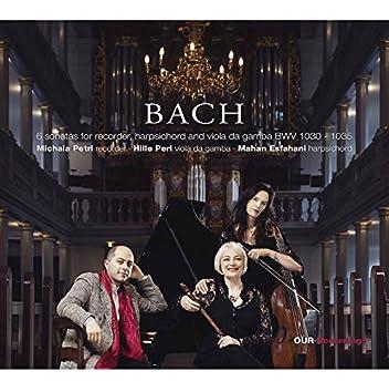 J.S. Bach: Flute Sonatas BWVV 1030-1035 (Arr. for Recorder & Basso continuo)