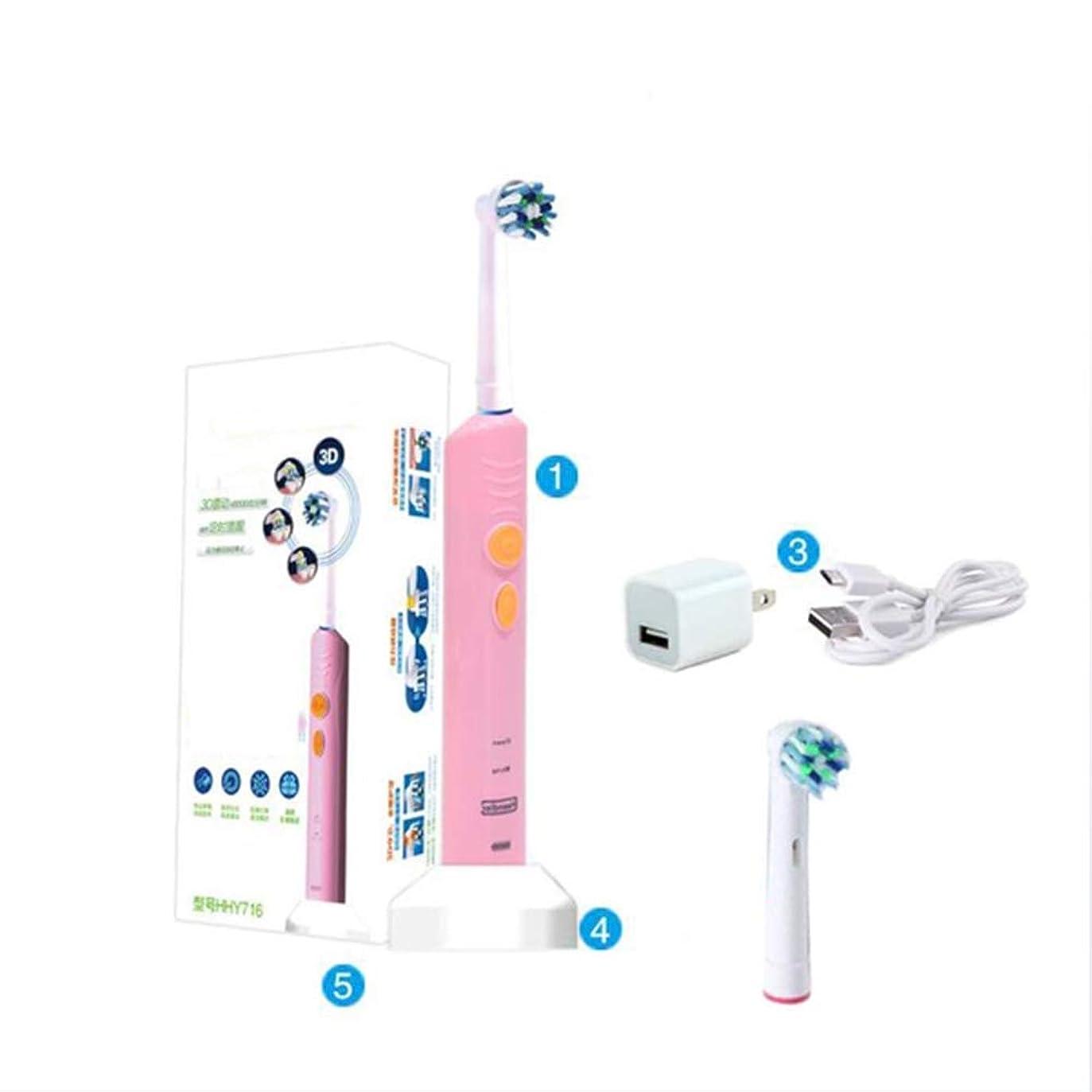 ジャケットシマウマデコラティブ電気ソニック充電式歯ブラシ、2つの交換可能なブラシヘッド、2つのモード、誘導充電、IPX7防水、2分のスマートタイミングと30秒のゾーンリマインダ、大人のための女性と男性