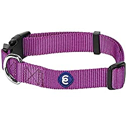 Blueberry Pet Classic Solid Colors