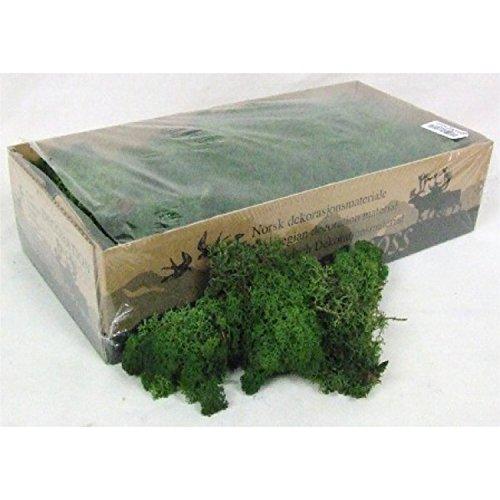 Moss - Norwegian Reindeer - Natural Preserved Dried - 20 Colours - Choose Weight (Dark Green - Moss, 100 Grams)