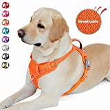 BARKBAY No Pull Dog Harness Front Clip Heavy Duty Reflective Easy Control Handle for Large Dog Walking with ID tag Pocket(Orange,L)