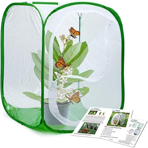 fgyujygf belangrijke insecten en vlinders Habitat kooi Terrarium Pop-up 15 × 15 × 23 inch lang, Polyester bodem voor eenvoudiger schoon
