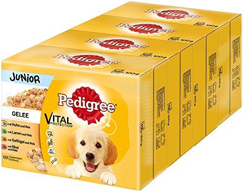 Pedigree Vital Protection hondenassvoering, voor puppy's in zak, hondenvoer in gelei in verschillende soorten, in multipack