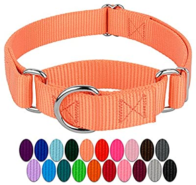 Country Brook Design - Martingale Heavyduty Nylon Dog Collar (Large, 1 Inch Wide, Mango)
