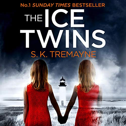 The Ice Twins Titelbild