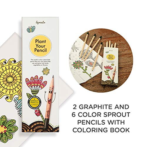 Sprout plantable pencils - KIDS EDITION in natural sustainable wood, Perfect for color books and as a highlighter,Box of 8