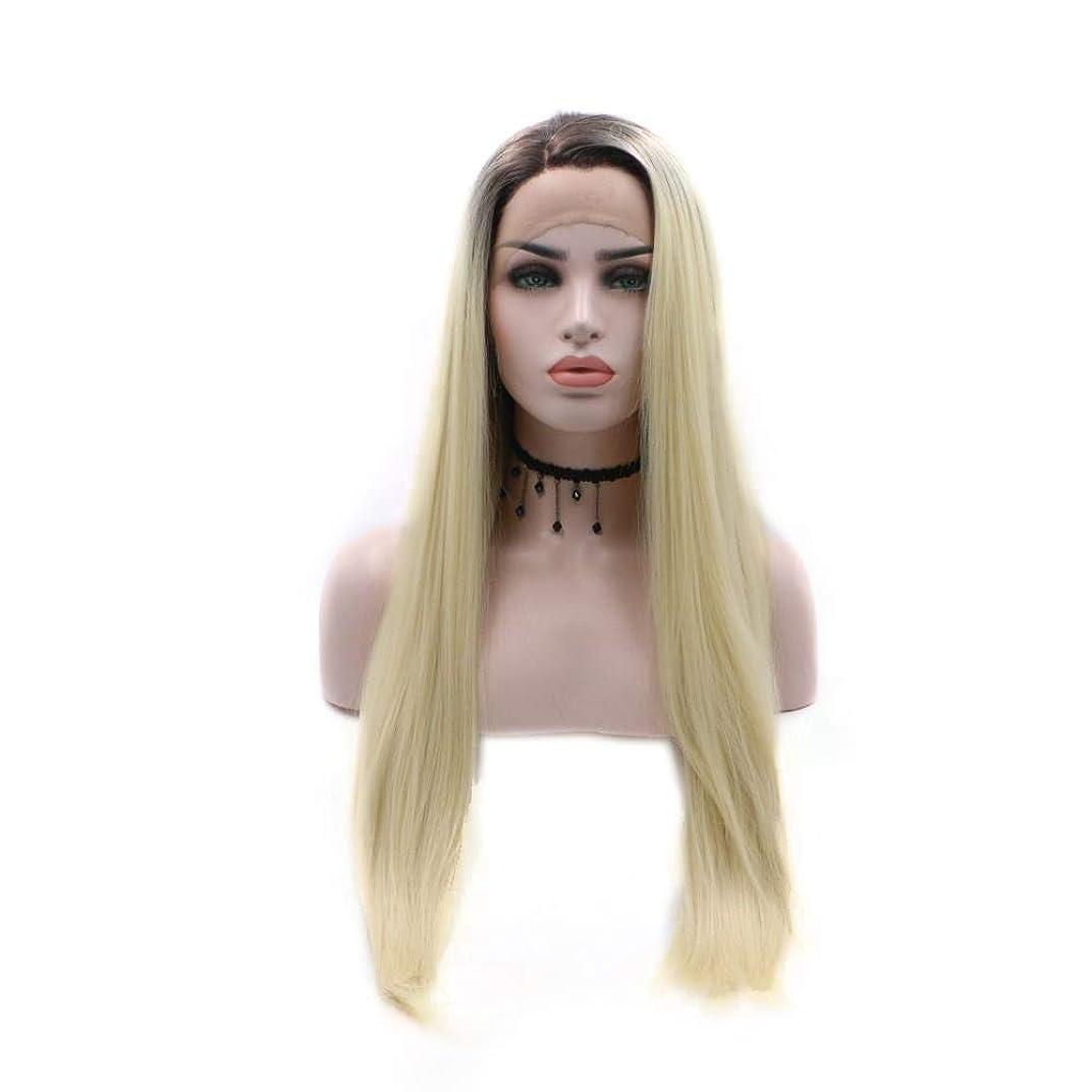 共同選択適切な公平なYrattary グラデーションロングストレートヘア部分かつら手織り合成レースフロントかつら合成ヘアレースかつらロールプレイングかつら (色 : Photo Color)