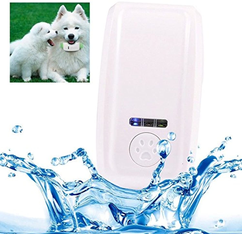 GSM GPRS GPS Tracker Collar Pet Dog Cat antilost (bluee)