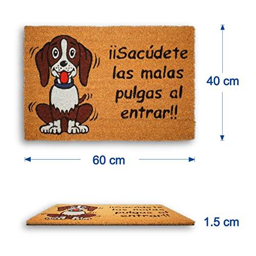 Felpudo Original Y Divertido Para La Entrada De Casa - Regalo Original Para La Decoración De Casa - Medidas 60x40x1,5 Centímetros