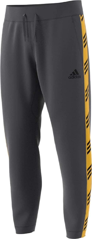 Adidas Herren 57685 Pro Madness Pants Hosen, grau, XX-Large