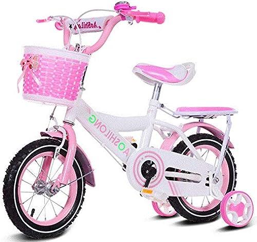WY-Tong Bicicleta Infantil Bicicletas Infantiles Bicicleta para bebé de 2 a 6 años. Bebé niña con Bicicleta estabilizadora