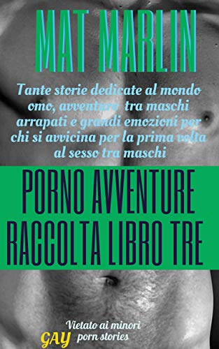 Porno avventure raccolta libro tre (porn stories) [Amore Gay]