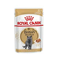 ROYAL CANIN British Shorthair Gravy Pouch 12 x 85g
