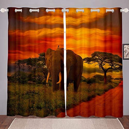 Cortinas para ventana de animales, para dormitorio, sala de estar, diseño bohemio, para niños, niñas, sabana africana, animales salvajes, ventanas, tratos para ventanas, W66 x L72