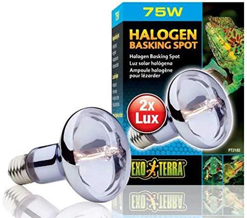 Exo Terra Sun Glo Halogen-Tageslichtlampe 35W