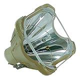 Lampada proiettore per Sony VPL-HW40ES Proiettore (nuda lampada)–LMP-H202
