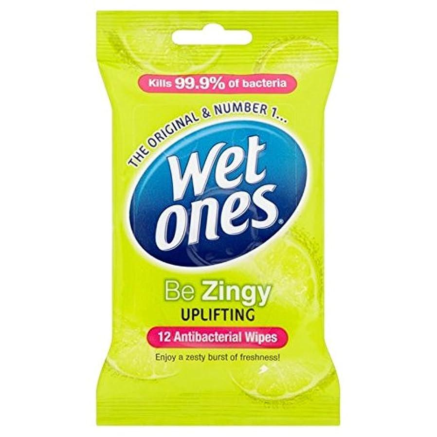 レトルトこどもの宮殿四回抗バクテリアをクレンジング湿ったものはパックごとに12ワイプ x2 - Wet Ones Cleansing Anti Bacterial Wipes 12 per pack (Pack of 2) [並行輸入品]