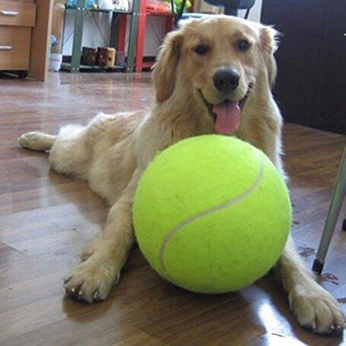 DIVISTAR Tennisbälle Hundespielzeug 24 cm großer Tennisball für Haustier-Kauspielzeug, großer aufblasbarer Tennisball Signature Mega Jumbo Haustierspielzeug Ball Supplies Cricket – Hundespielzeug