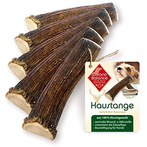 ChronoBalance® Geweih-Kaustange (halbiert) für Hunde - 100% Hirschgeweih - Kauspielzeug, Zahnpflege, Kausnack, Geweih, Kauknochen (Sparpaket (5 x Größe XL))